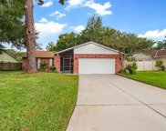 11416 Country Oaks Drive, Tampa image