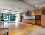 423 Agnes Street Unit 212, New Westminster image