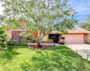 2608 Camille Drive, Palm Harbor image
