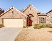11217 Gibbons Creek, Frisco image