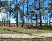 1437 Whooping Crane Dr., Conway image