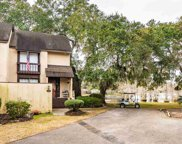 59 Mayrant Bluff Ln. Unit 64, Georgetown image