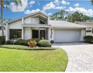 14626 Village Glen Circle, Tampa image