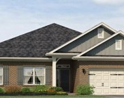 706 Butterfly Lake Court Unit Lot 138, Greenville image