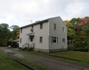 367 Cushentunk  Drive, Cochecton image