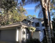 110 Fallen Timber Trail, Deland image