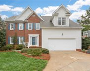 8804 Peppergrass  Lane, Waxhaw image