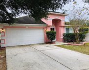 3107 Summer House Drive, Valrico image