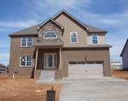 45 Reserve at Hickory Wild, Clarksville image