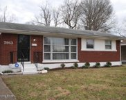 7913 Jonquil Dr, Louisville image