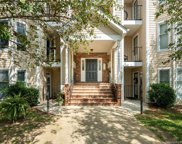 10248 Rose Meadow  Lane, Charlotte image