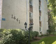 1441 W Farwell Avenue Unit #4A, Chicago image
