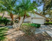 3571 Tanglewood Trail, Palm Harbor image