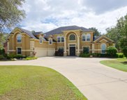 316 HOLLYWOOD FOREST DR, Fleming Island image