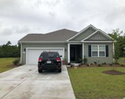 225 Rolling Woods Ct., Little River image