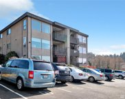 813 227th Place Unit 9, Des Moines image