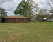 19510 N 6th Street N, Citronelle image