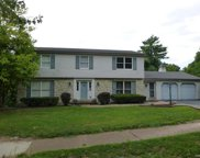 14510 Amstel, Chesterfield image