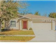 13953 Jacobson Drive, Odessa image