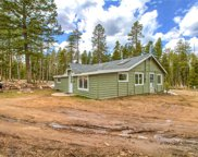 10887 Goodheart Avenue, Conifer image