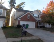 2419  Cairns Mill Court, Charlotte image