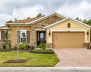 643 Irvine Ranch Road, Poinciana image