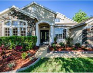 1516 Tawnyberry Court, Trinity image