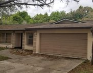 7117 S Tallowtree Lane, Orlando image