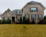1041 Alice Springs Cir, Spring Hill image