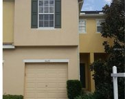 5026 White Sanderling Court, Tampa image