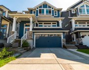 10292 238a Street, Maple Ridge image