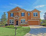 1016 TORRY CT, St Johns image