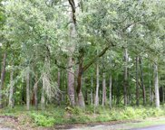Lot 3 Tuckers Road., Pawleys Island image