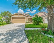 11530 Bay Gardens Loop, Riverview image