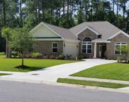 1820 Wood Stork Dr., Conway image