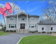 18 Mcculloch Dr, Dix Hills image
