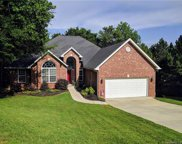 11009  High Ridge Court, Tega Cay image
