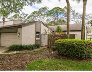 660 Woodridge Drive Unit 660, Fern Park image