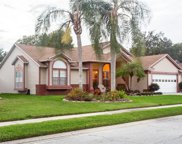 7900 Grimsby Lane, New Port Richey image