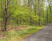 6250 Trillium Trail, Harbor Springs image