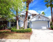 10103 Deercliff Drive, Tampa image