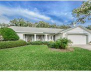 1255 Royal Oak Drive, Dunedin image