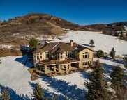 1443 Cactus Rose Circle, Castle Rock image