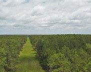 243 Acres Chene  Drive, Lacombe image