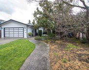 2519 Whipple Ave, Redwood City image