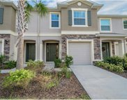 10407 Orchid Mist Court, Riverview image