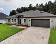 10934 Priebe Road, Clermont image