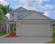 5454 Turtle Crossing Loop, Tampa image