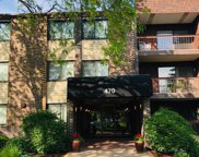 470 Raintree Court Unit 2N, Glen Ellyn image