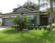 11654 Palmetto Pine Street, Riverview image